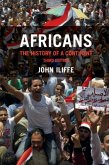 Africans (eBook, PDF)