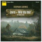 Zorn - Wie du mir / Hauptkommissar Claudius Zorn Bd.6 (1 MP3-CD)