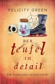 Der Teufel im Detail (eBook, ePUB)