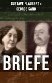Gustave Flaubert & George Sand: Briefe (eBook, ePUB)