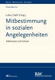 Mitbestimmung in sozialen Angelegenheiten, Band 1 (eBook, PDF)