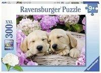 Süße Hunde im Körbchen. Kinderpuzzle 300 Teile