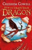 How to Train Your Dragon (eBook, ePUB)
