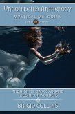 The Nightly Dance Aboard the Ship of Wonders (Uncollected Anthology) (eBook, ePUB)
