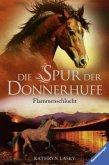 Flammenschlucht / Die Spur der Donnerhufe Bd.1 (Mängelexemplar)