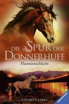 Flammenschlucht / Die Spur der Donnerhufe Bd.1 (Mängelexemplar) - Lasky, Kathryn