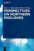 Perspectives on Northern Englishes (eBook, ePUB)
