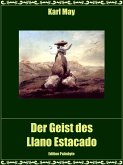 Der Geist des Llano Estacado (eBook, ePUB)