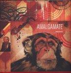 Amalgamate: The Art, Design and Exploration of Blaine Fontana (Mängelexemplar)