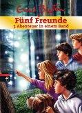 Fünf Freunde - 3 Abenteuer in einem Band / Fünf Freunde Sammelbände Bd.19 (Mängelexemplar)