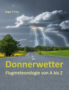 Donnerwetter (eBook, ePUB)