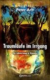 Traumläufe im Irrgang (eBook, ePUB)