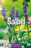 Salbei (eBook, ePUB)