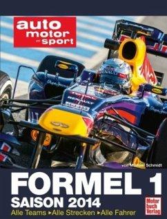 Formel 1 Saison 2014 (Mängelexemplar) - Schmidt, Michael