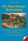 Die Elgersburger Promenaden (eBook, ePUB)