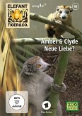 Elefant, Tiger & Co. - Amber & Clyde - Neue Liebe?, DVD