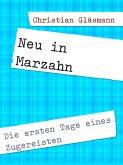 Neu in Marzahn (eBook, ePUB)