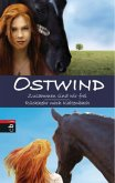 Ostwind: Zusammen sind wir frei / Rückkehr nach Kaltenbach (Mängelexemplar)