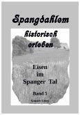 Spangdahlem historisch erleben, Band 5