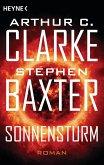 Sonnensturm (eBook, ePUB)