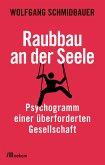Raubbau an der Seele (eBook, ePUB)