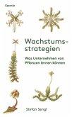 Wachstumsstrategien (Mängelexemplar)