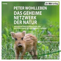 Das geheime Netzwerk der Natur (MP3-Download) - Wohlleben, Peter