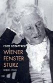 Wiener Fenstersturz (eBook, ePUB)