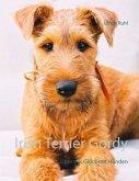 Irish Terrier Gordy