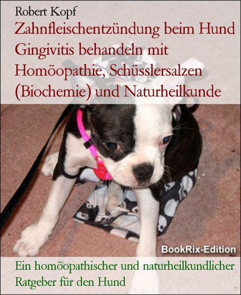 homöopathie allergie beim hund