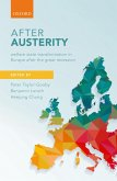 After Austerity (eBook, ePUB)