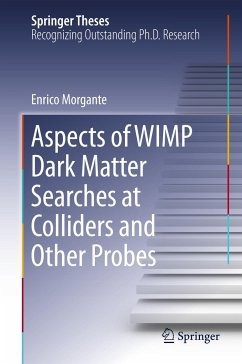 Aspects of WIMP Dark Matter Searches at Colliders and Other Probes - Morgante, Enrico