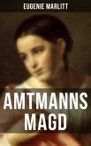 Amtmanns Magd (eBook, ePUB)