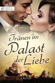Tränen im Palast der Liebe (eBook, ePUB)