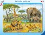 Afrikas Tierwelt (Kinderpuzzle)