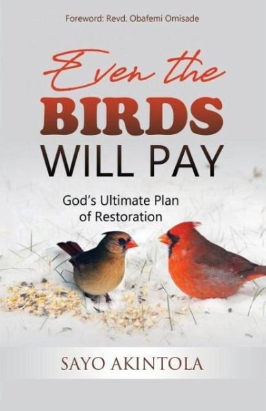 Even The Birds Will Pay - Akintola, Sayo