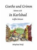 Goethe und Grimm hätten sich in Karlsbad und Teplitz treffen können (eBook, ePUB)