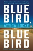 Bluebird, Bluebird (eBook, ePUB)