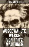Fritz Mauthner: Kritiken, Philosophische Aufsätze, Erzählungen, Kulturgeschichtliche Schriften, Romane, Autobiografie und mehr (eBook, ePUB)