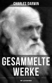 Gesammelte Werke von Charles Darwin (Mit Illustrationen) (eBook, ePUB)