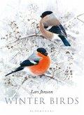 Winter Birds (eBook, PDF)