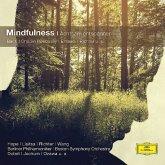 Mindfulness-Achtsam Entspannen (Cc)