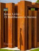 James Licini - 15 Stahlbauten in Ascona