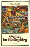 Geister im Waldgebirg (eBook, ePUB)