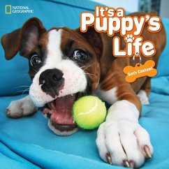 It's a Puppy's Life - Casteel, Seth