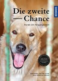 Die zweite Chance (eBook, ePUB)