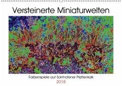 Versteinerte Miniaturwelten - Farbenspiele auf Solnhofener Plattenkalk (Wandkalender 2018 DIN A2 quer)