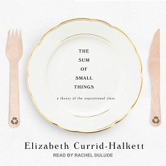 The Sum of Small Things: A Theory of the Aspirational Class - Currid-Halkett, Elizabeth