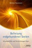 Befreiung erdgebundener Seelen (eBook, ePUB)