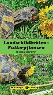 Landschildkröten-Futterpflanzen - Schramm, Ricarda